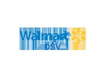 Shopify walmart dsv